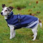 Bucas recuptex therapy dog rug light