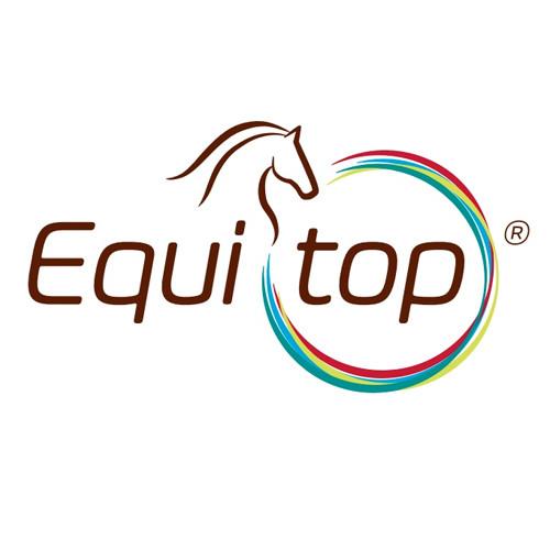 Equitop Logo