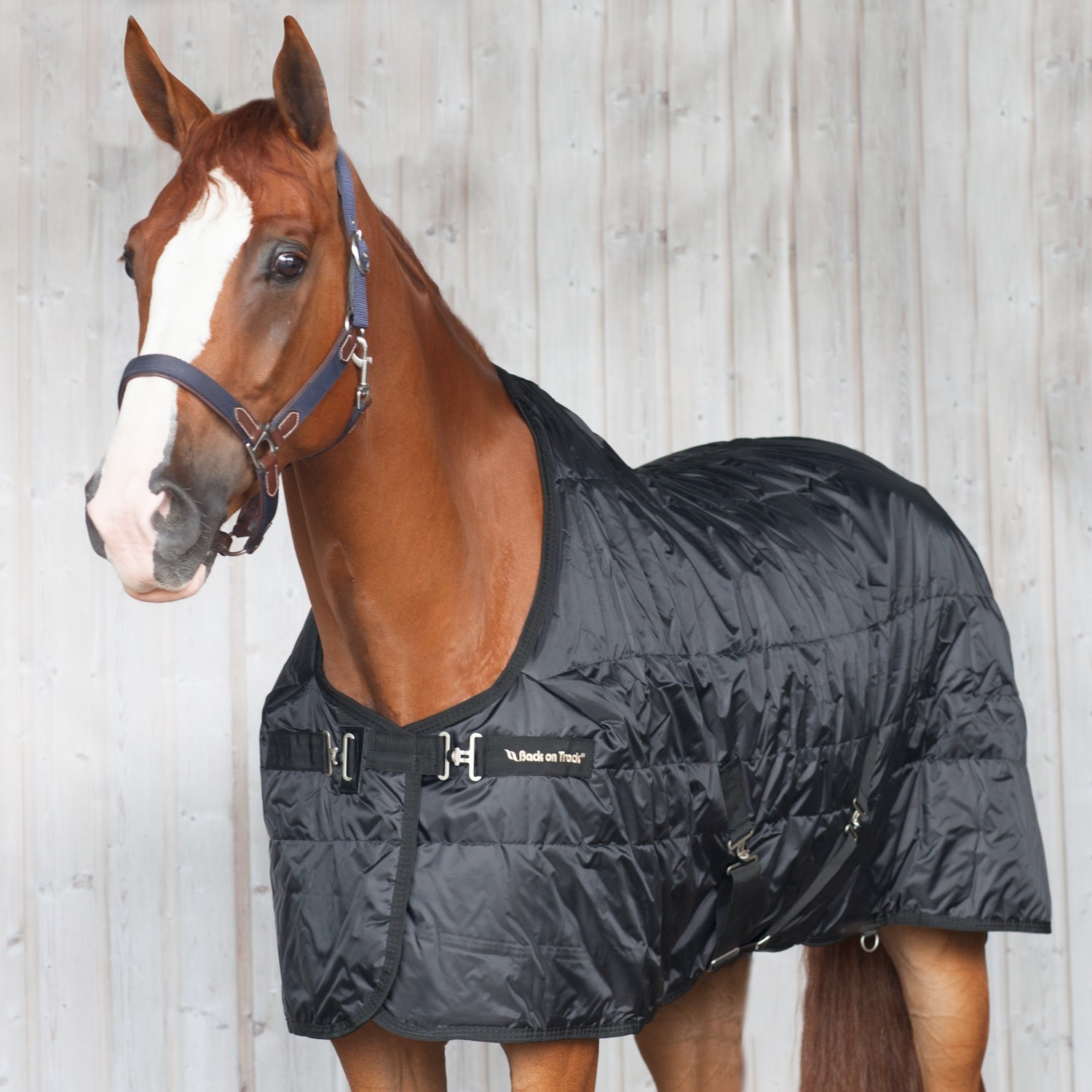 BACK ON TRACK STABLE RUG MIA RIME