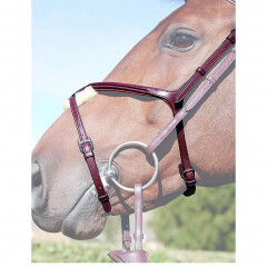 Dy'on fig 8 noseband
