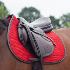 Kentucky leather halter flexible