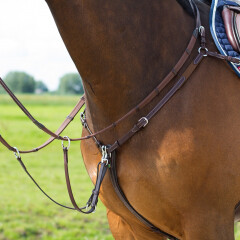 Lj leathers new pro breastplate
