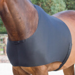Qhp chestprotector
